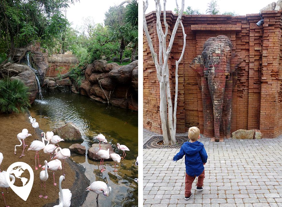 Spanje met kind - bioparc Fuengirola