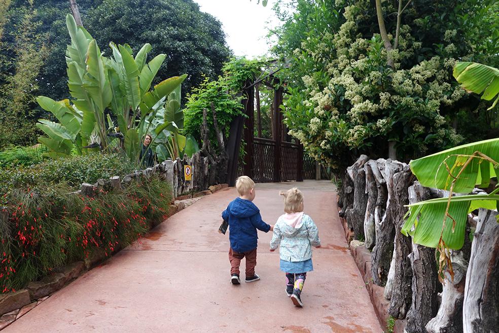 Kids hotspot: Bioparc Fuengirola