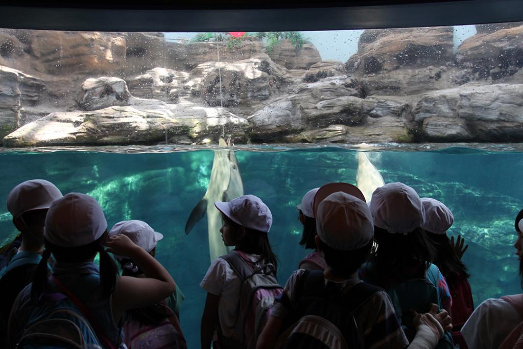 Waarom Japan het perfecte land is voor een vakantie met kinderen
