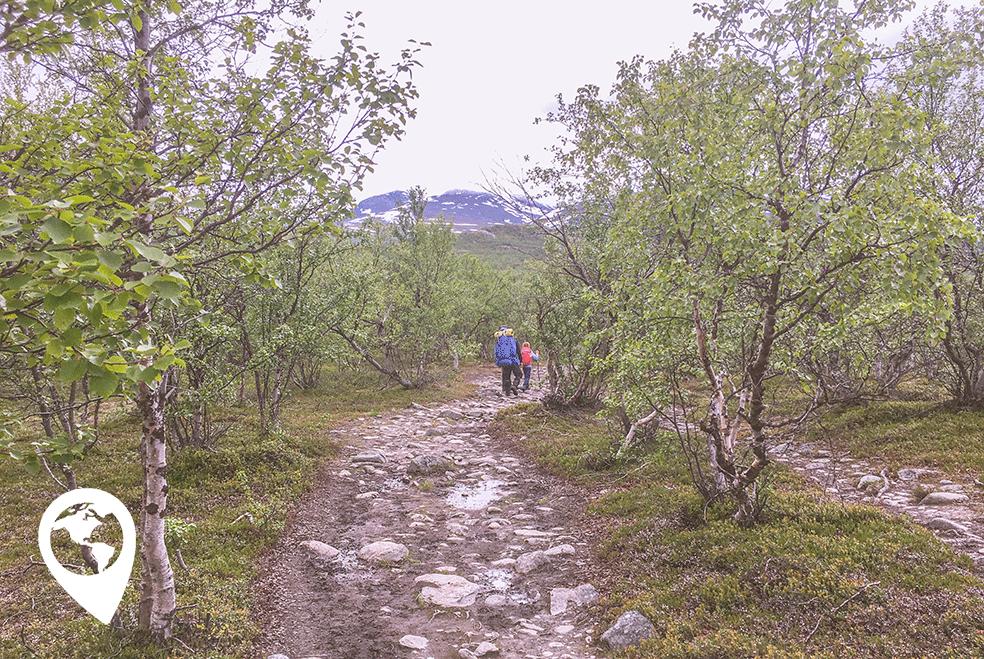 Wildkamperen met kinderen wandelen