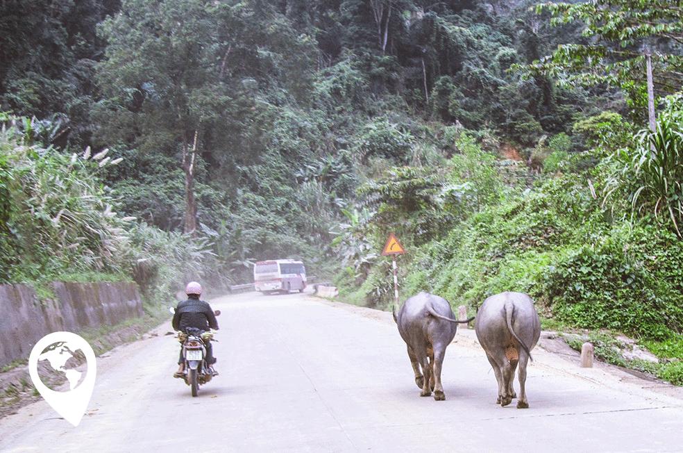 graveltag Vietnam