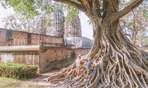 sukhothai-tempel-boom