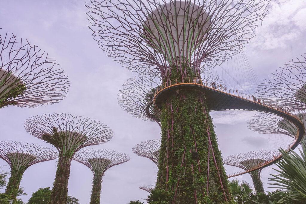 Week 14: Laatste dagen in Singapore