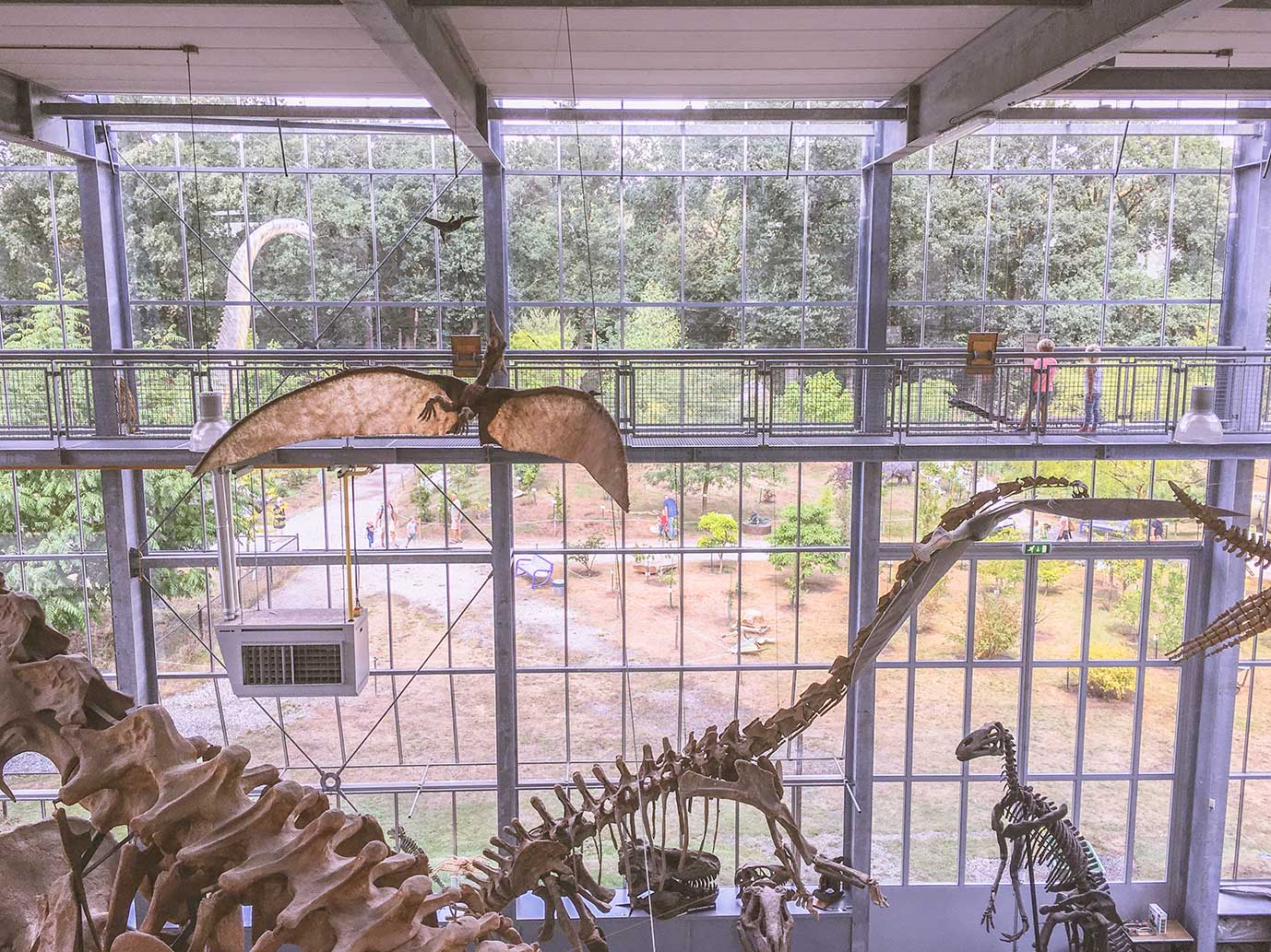 oertijdmuseum-dinosaurusmuseum-boxtel