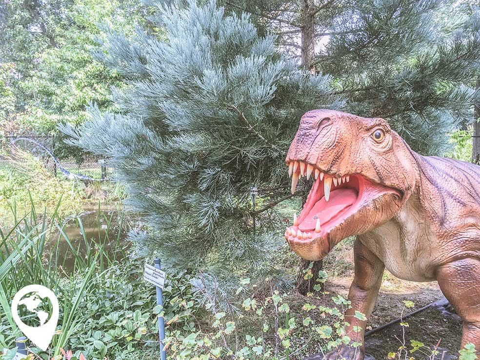 oertijdmuseum-oertijdtuin-dino-1