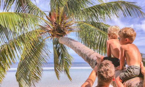 Koh-Phangan-met-kinderen-palmboom