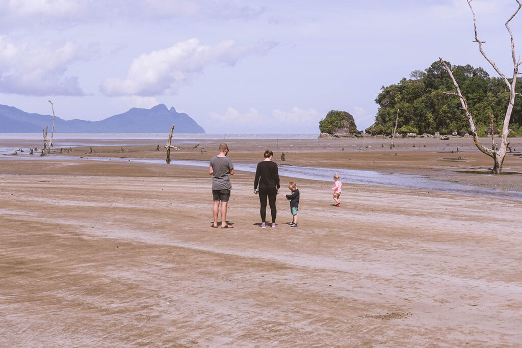 Bako National Park met kinderen – Praktische tips