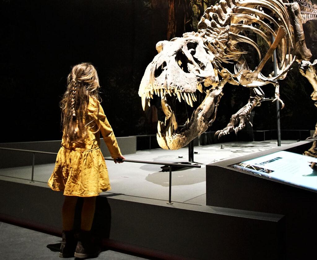 Naturalis met kinderen – kijkje in het nieuwe museum