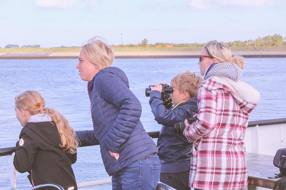 Schouwen-Duiveland met kinderen - bruinvissen spotten
