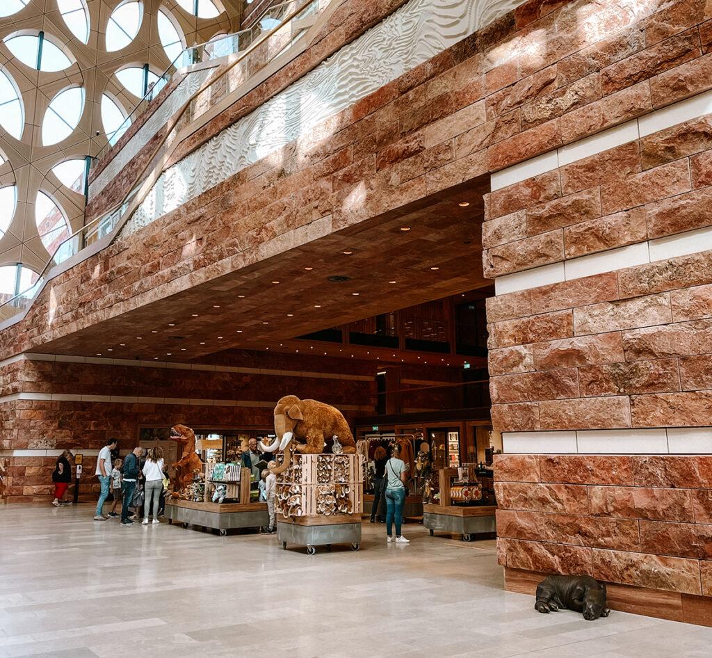 Museumwinkel in Naturalis
